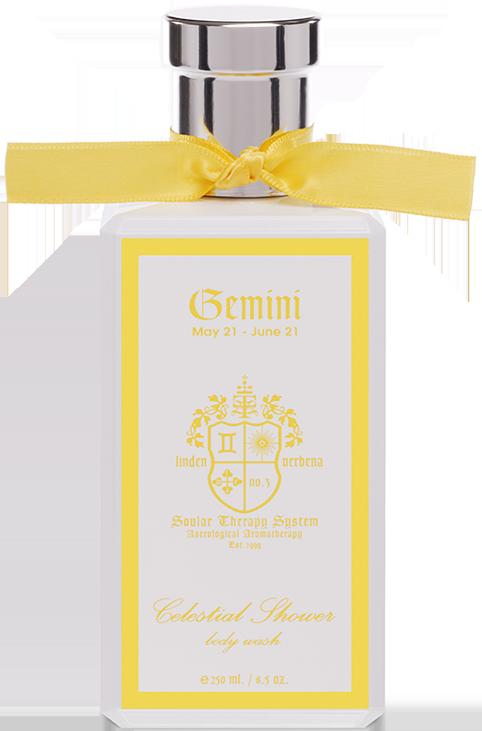 Celestial Shower Gemini